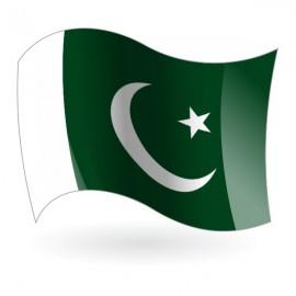 Bandera de la República Islámica de Pakistán